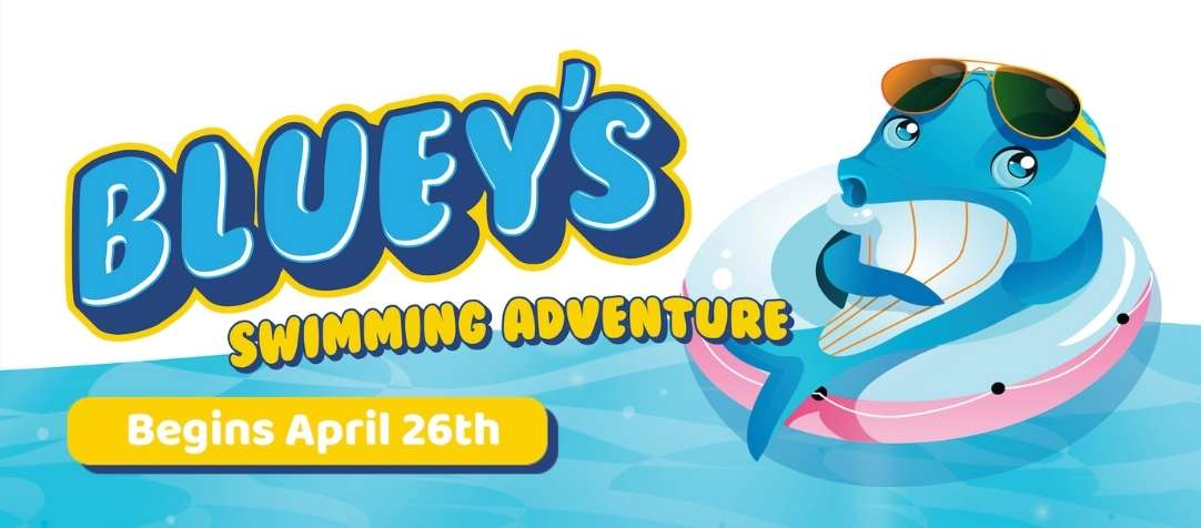 Bluey's Swimming Adventure Starts April 26th 2021